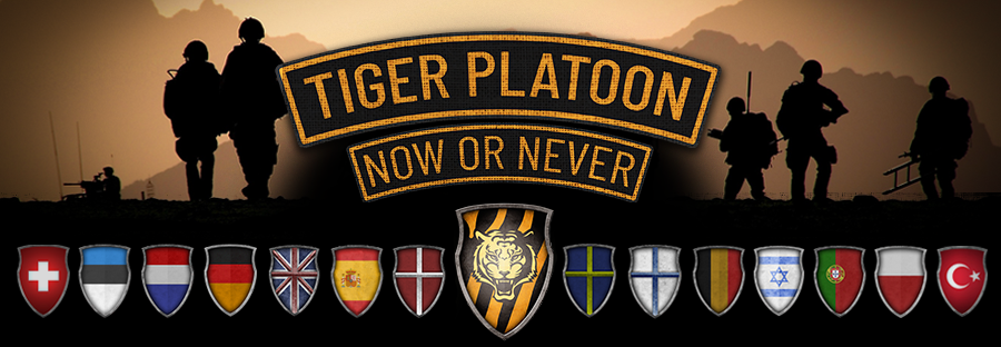 Tiger Platoon